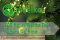 300 Kg  H Planta De Pellets De Pino